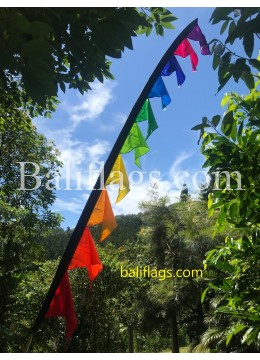 Rainbow Wowee Flag