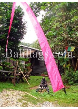 Bali Fuchsia Flags