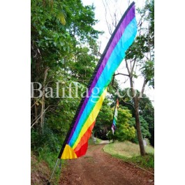 Rainbow Flags (4)